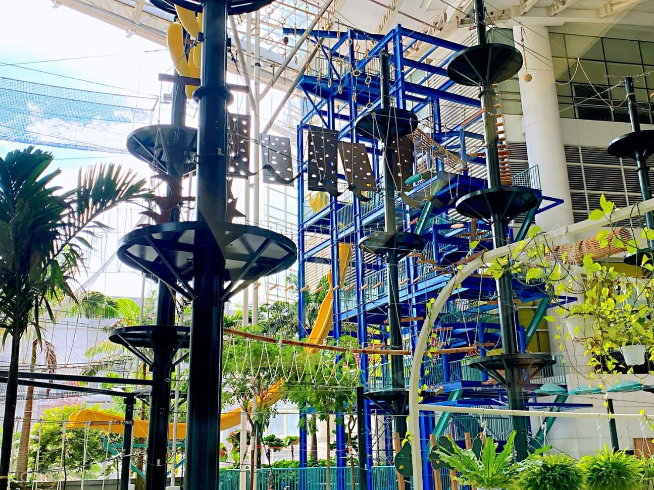 More than 50 types of different challenges and fun rides for you to try out